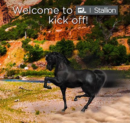 ent_stallion_email_blast_2_lge